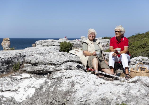 raukområde tanter fikakorg gåstavar region gotland äldrepolitiska programmet
