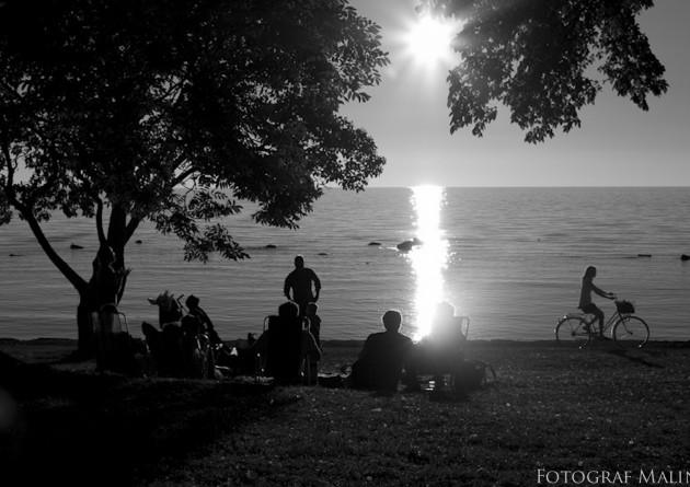 strandpromenaden visby svartvitt gitarrspel solnedgång cykel